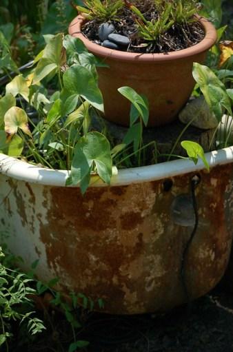 Bathtub, Gardens Oy Vey