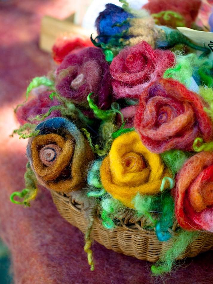 Ayala's Roses