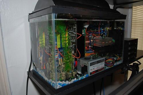 Aquarium_PC25