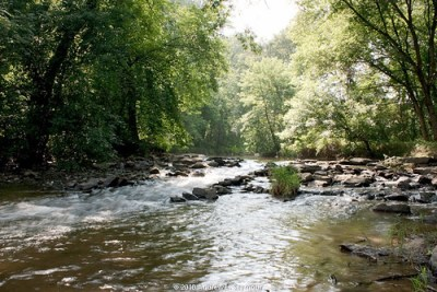 Speakman #1 Bridge (Looking Up Creek)