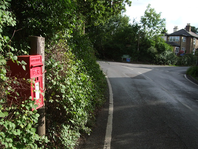 Downe lane