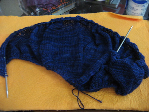 Lune shawl - Day 1 SDCC