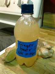 Ginger Beer I