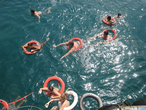 south china sea, swimming