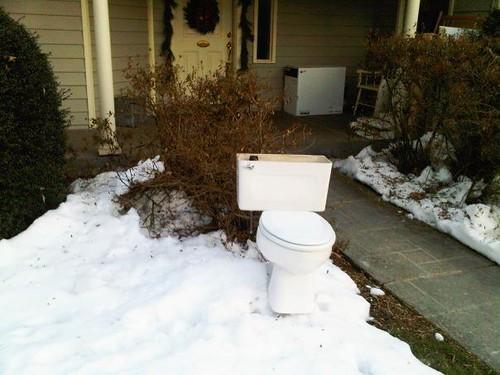 toilet rhooby