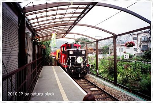 b-20100706_natura136_020.jpg