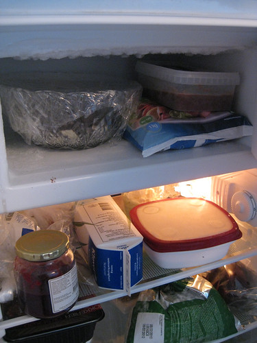 My tiny fridge/freezer