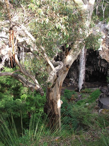 Picture from Jewel Cave, Western Australia