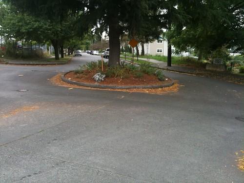 typical seattle neighborhood roundabout