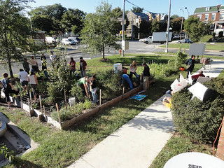 10 10 02 Mobile Market in Waverly Green Spaces 04.jpg