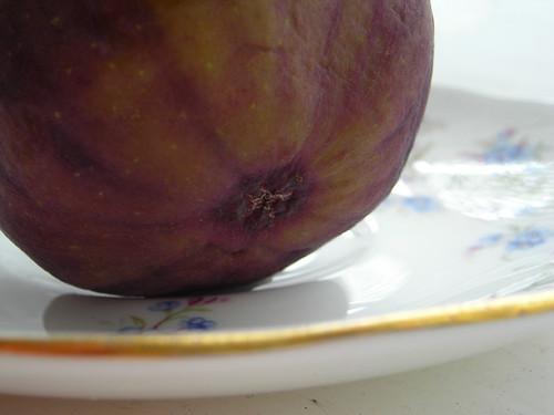 Figs 02