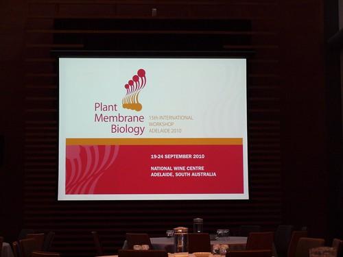 Plant Membrane Biology