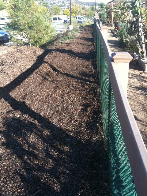 Mulch barrier