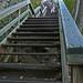 stepsup134