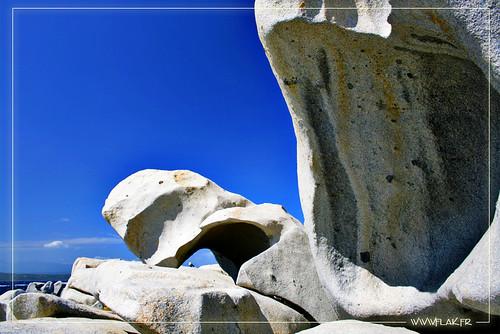 Sculptures de Neptune