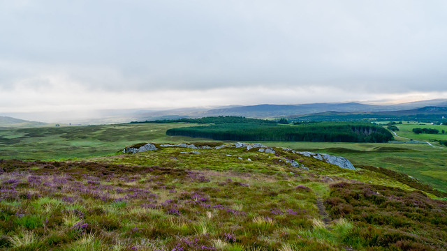 Expansive moorland view