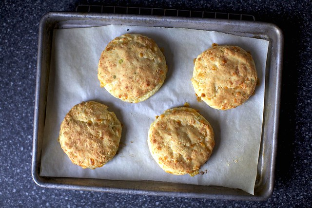 sour cream and cheddar biscuits