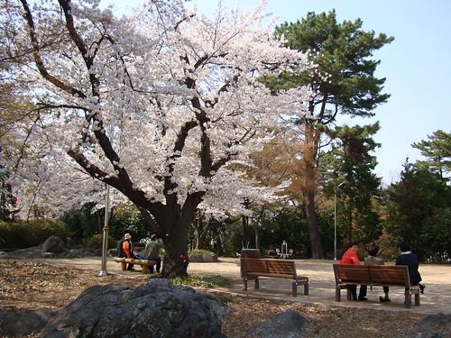 Ulsan Japanese Castle 울산왜성 蔚山倭城