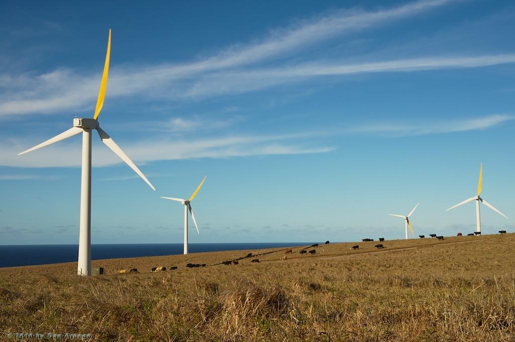 Hawi Wind Farm at Upolu Point
