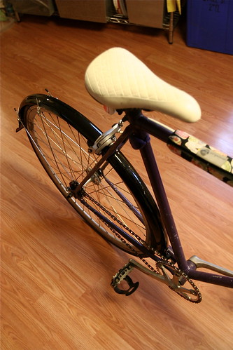 new fenders on the bicycleta