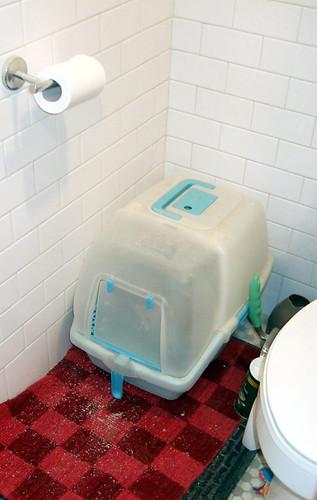 bathroomcatbox-before
