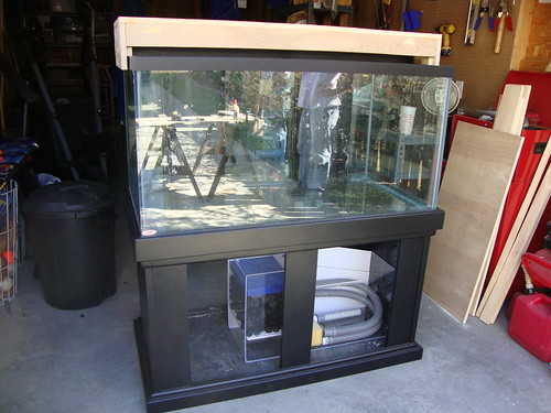 Cichlid Forum 120 Gallon Build Stand Canopy Drilled