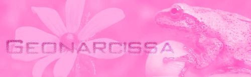 geonarcissa header