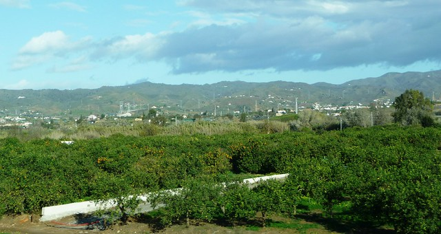 El Paisaje Agrario Mediterr 193 Neo Geobiombo