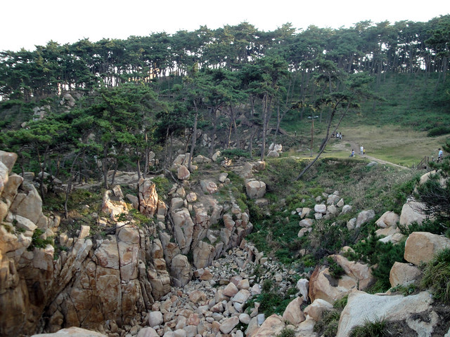 Ilsan Beach, Pine Forest