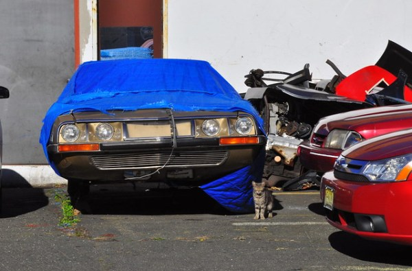 Citroën SM and a cat
