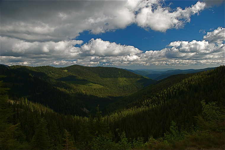 Scene to the north of Vermilion Pass