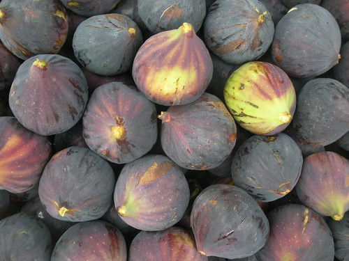 Figs glorious figs...