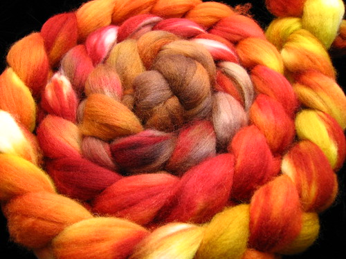 Slices of Fall - Polwarth wool hand dyed top
