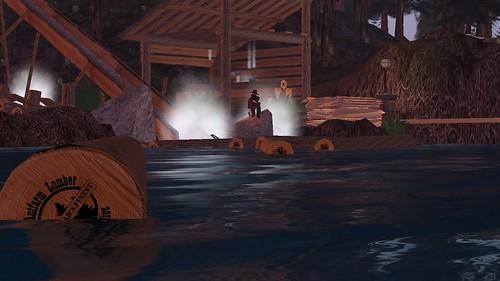 Floating Logs_001