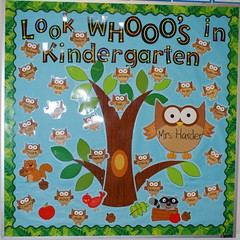 Look WHOOO's in Kindergarten