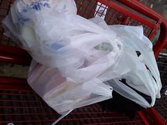 Day 277: Shopping Run