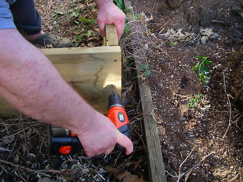 3 boards and 12 screws...raised bed construction made easy (4/6)