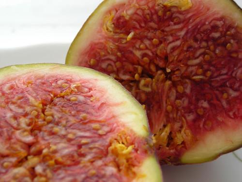 Figs 04