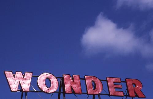 Day 218/365 - Sky full of Wonder