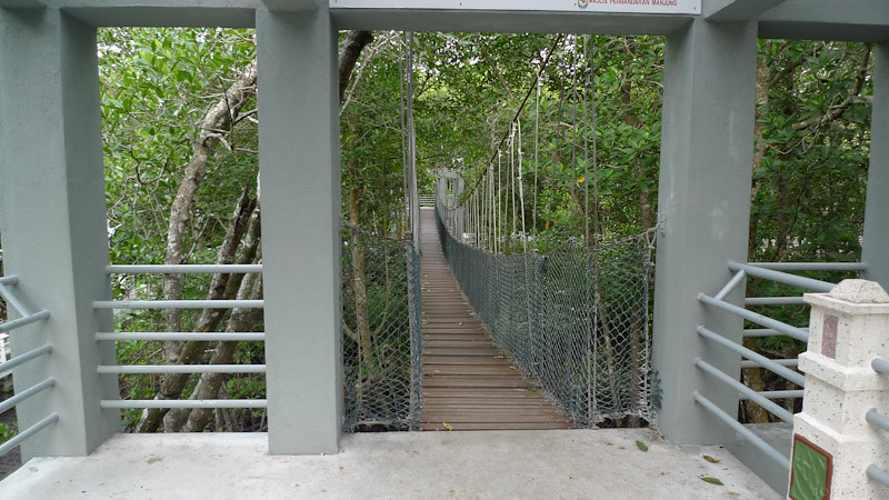 Taman Paya Bakau - 17