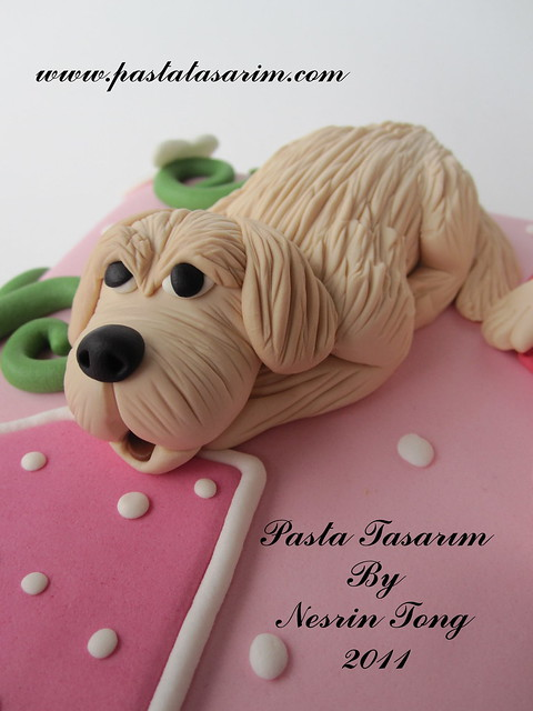 1ST BIRTHDAY CAKE - LARA BIRTHDAY
