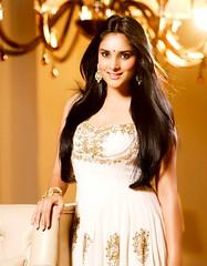 Indian Actress Ramya Hot Sexy Images Set-2  (67)