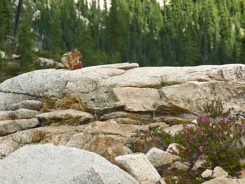 Maple Pass hike