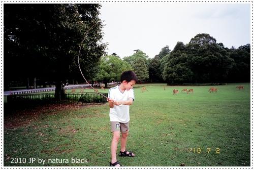 b-20100702_natura134_012.jpg