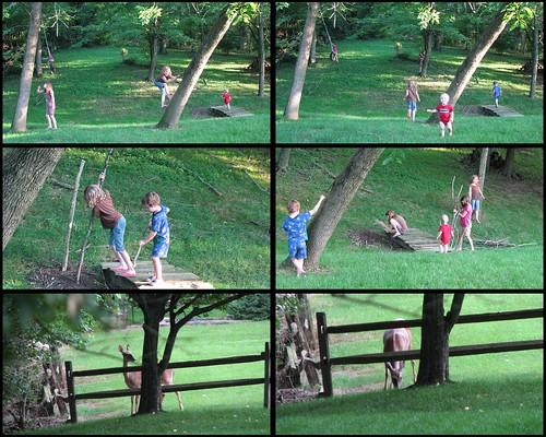 Ohio Backyard Collage