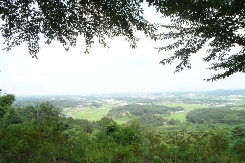 Mountain in Dang Jin, Korea