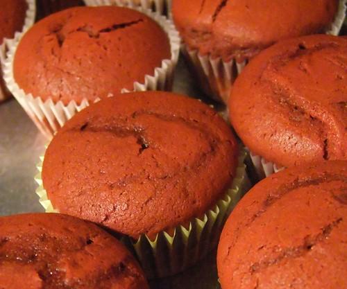 Red velvet cupcakes 8.20.10