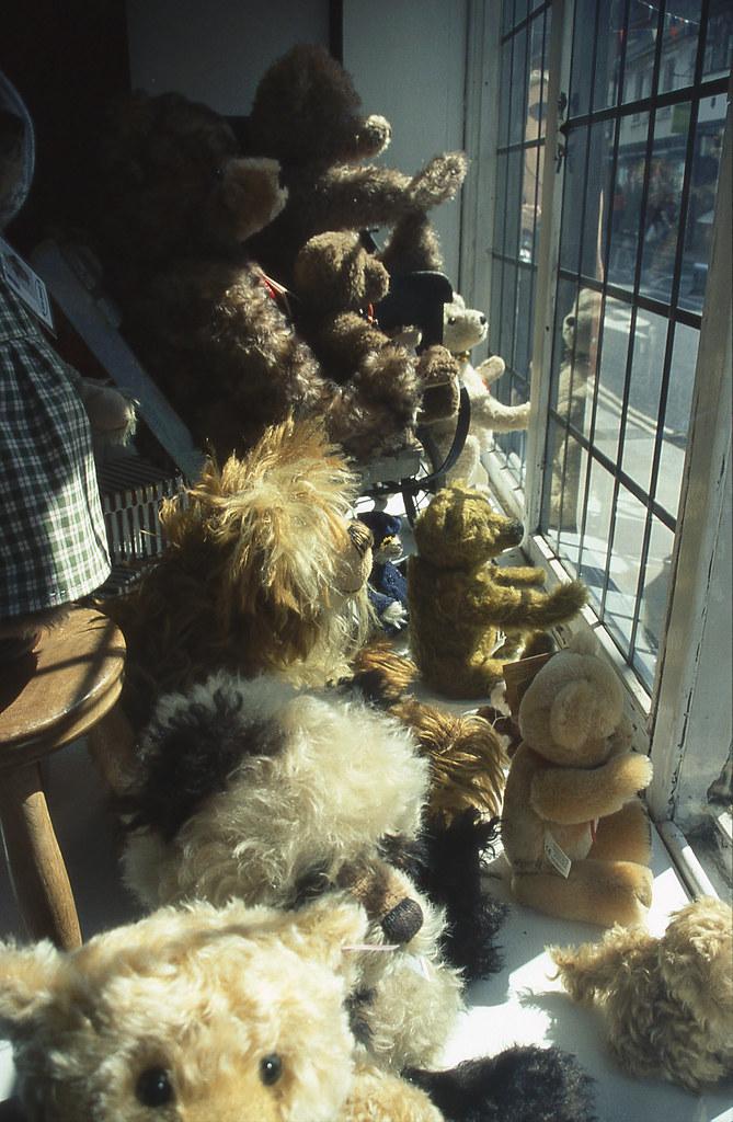 Teddy bears' glimpse of freedom