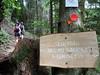 Skid Trail Sign