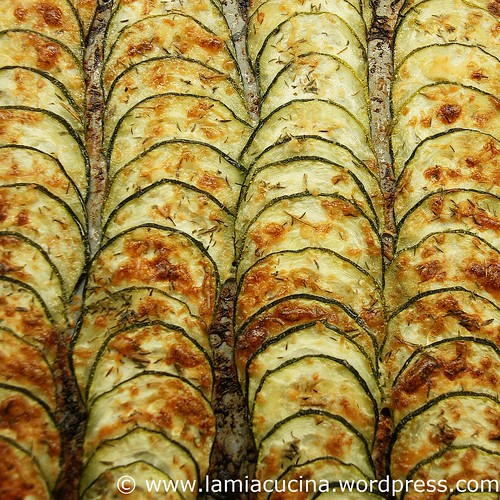 Gebackene Zucchinikeule 0_2010 07 18_8156